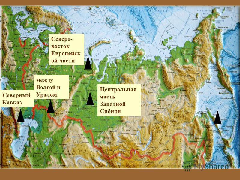 Северный Кавказ Северо - восток Европейск ой части Центральная часть Западной Сибири между Волгой и Уралом