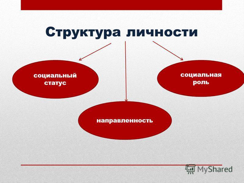 Структура личности социальный статус социальная роль направленность