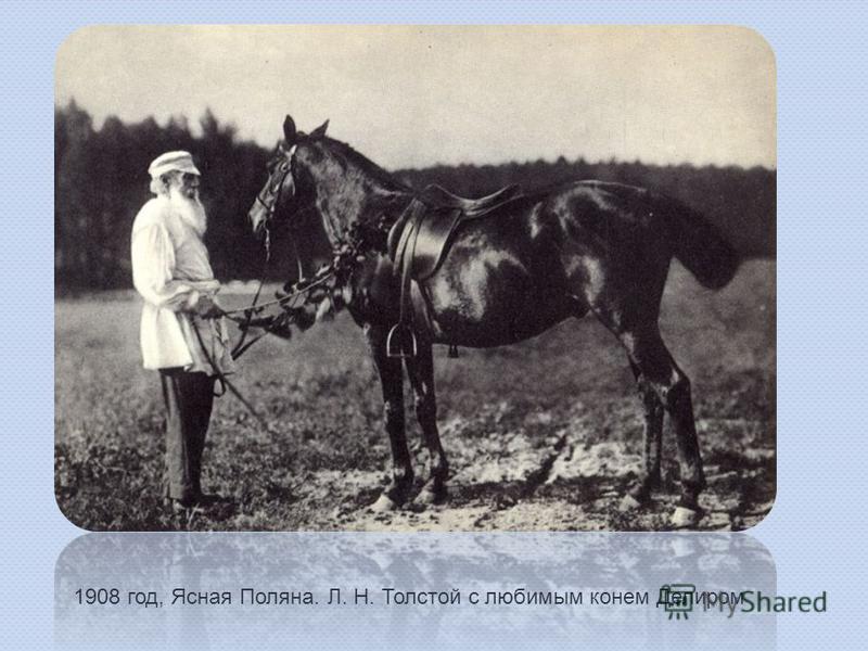 1908 год, Ясная Поляна. Л. Н. Толстой с любимым конем Делиром