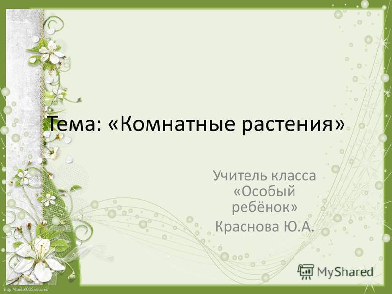 Тема: «Комнатные растения» Учитель класса «Особый ребёнок» Краснова Ю.А.