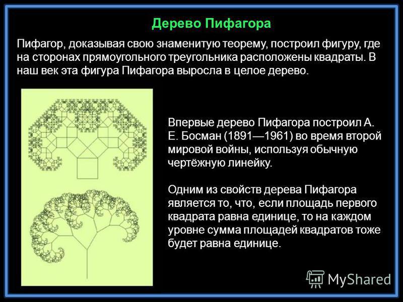 Пифагор, доказывая свою знаменитую теорему, построил фигуру, где на сторонах прямоугольного треугольника расположены квадраты. В наш век эта фигура Пифагора выросла в целое дерево. Впервые дерево Пифагора построил А. Е. Босман (18911961) во время вто