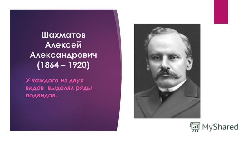 Шахматов Алексей Александрович (1864 – 1920) У каждого из двух видов выделял ряды подвидов.