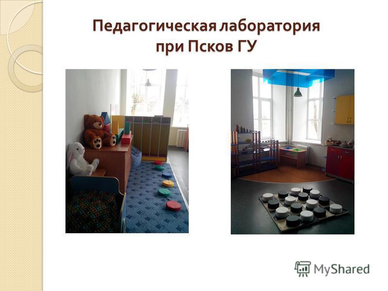 Педагогическая лаборатория при Псков ГУ