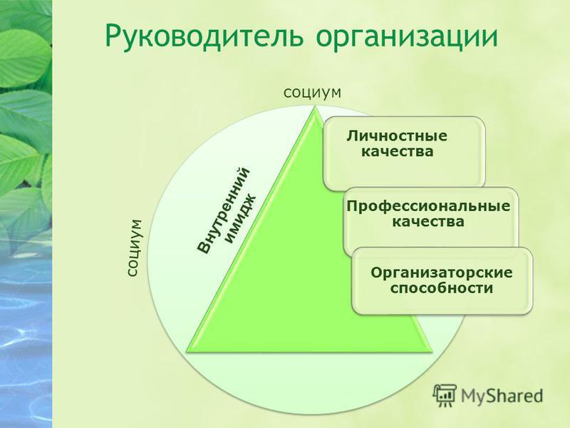 Руководитель организации Орр Личностные качества Профессиональные качества Организаторские способности Внутренний имидж социум
