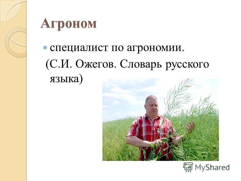 Агроном специалист по агрономии. (С.И. Ожегов. Словарь русского языка)