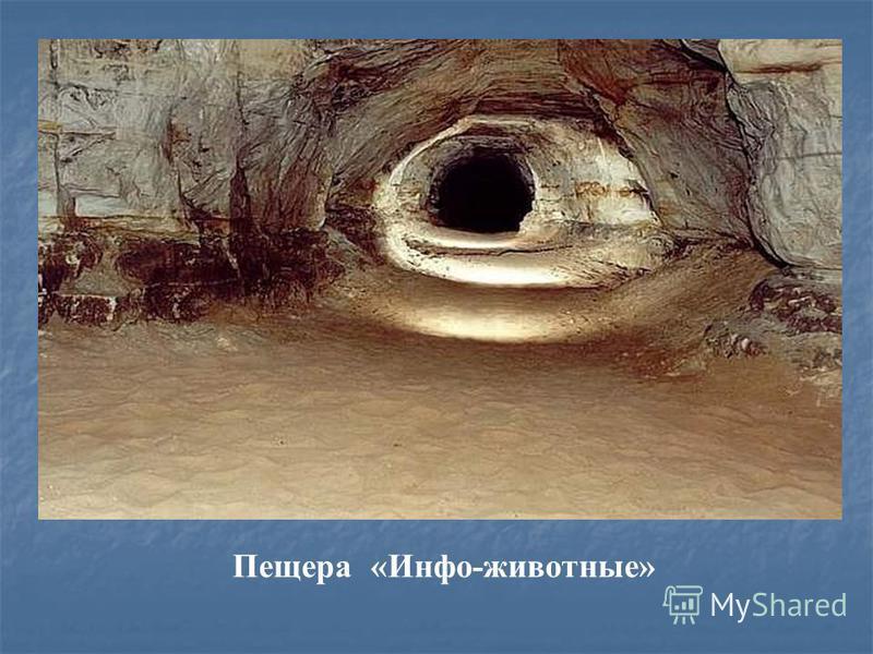Пещера «Угадай-ка»