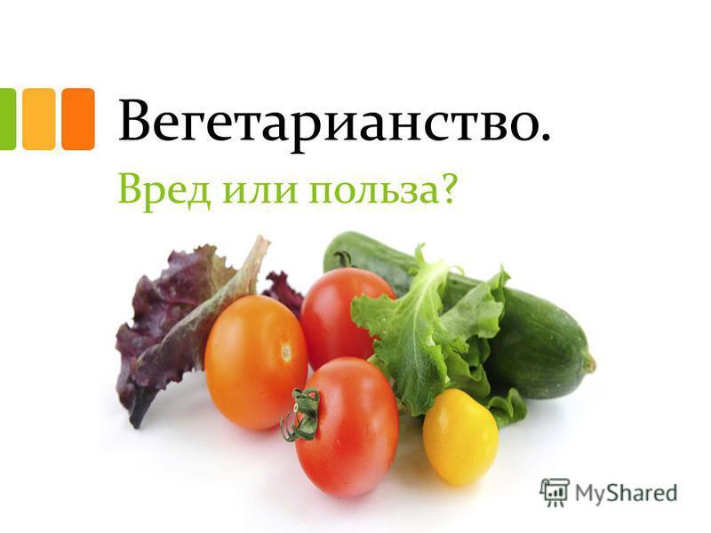 Вегетарианство. Вред или польза?