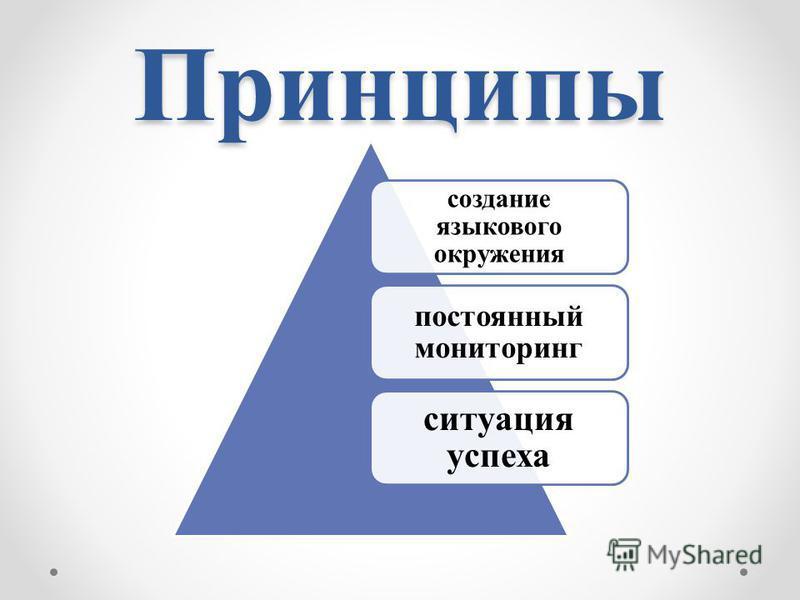 Принципы создание языкового окружения постоянный мониторинг ситуация успеха