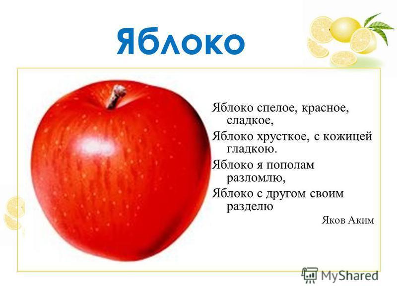 Яблоко Яблоко спелое, красное, сладкое, Яблоко хрусткое, с кожицей гладкою. Яблоко я пополам разломлю, Яблоко с другом своим разделю Яков Аким