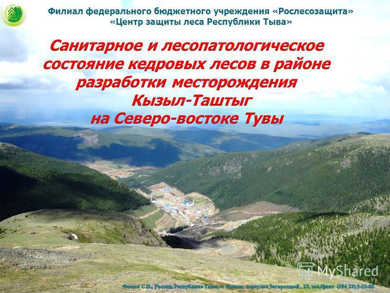 Филиал федерального бюджетного учреждения «Рослесозащита» «Центр защиты леса Республики Тыва»