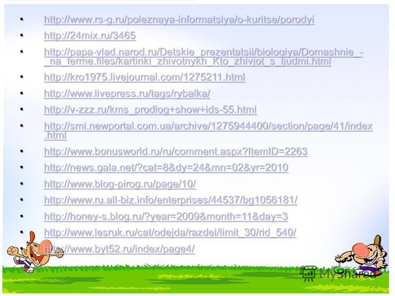 http://www.rs-g.ru/poleznaya-informatsiya/o-kuritse/porodyi http://www.rs-g.ru/poleznaya-informatsiya/o-kuritse/porodyi http://www.rs-g.ru/poleznaya-informatsiya/o-kuritse/porodyi http://24mix.ru/3465 http://24mix.ru/3465 http://24mix.ru/3465 http://