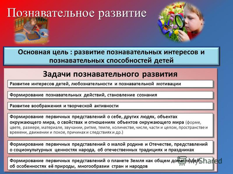 Познавательное развитие Основная цель : развитие познавательных интересов и познавательных способностей детей Задачи познавательного развития Развитие интересов детей, любознательности и познавательной мотивации Формирование познавательных действий,