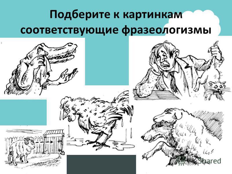 Подберите к картинкам соответствующие фразеологизмы