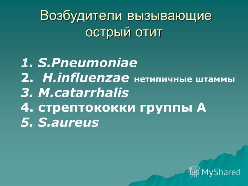 Возбудители вызывающие острый отит Возбудители вызывающие острый отит 1. S.Pneumoniae 2. H.influenzae нетипичные штаммы 3. M.catarrhalis 4. стрептококки группы А 5. S.aureus