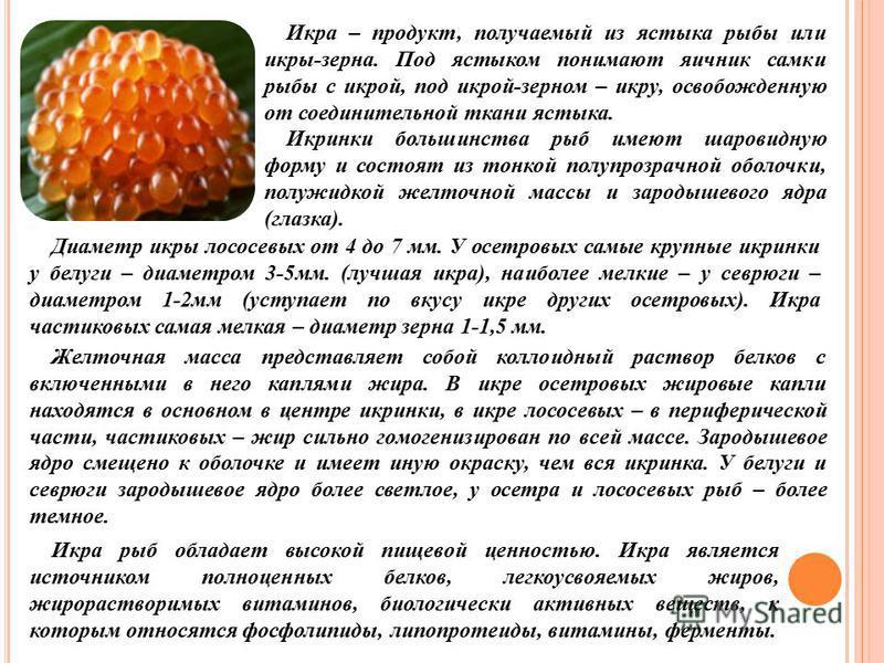 Икра – продукт, получаемый из ястыка рыбы или икры-зерна. Под ястыком понимают яичник самки рыбы с икрой, под икрой-зерном – икру, освобожденную от соединительной ткани ястыка. Икринки большинства рыб имеют шаровидную форму и состоят из тонкой полупр