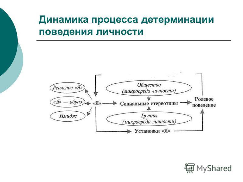 Динамика процесса детерминации поведения личности
