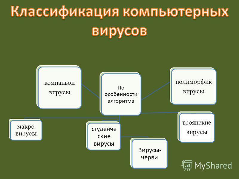 По особенности алгоритма макро вирусы компаньон вирусы Вирусы- черви студенческие вирусы троянские вирусы полиморфик вирусы