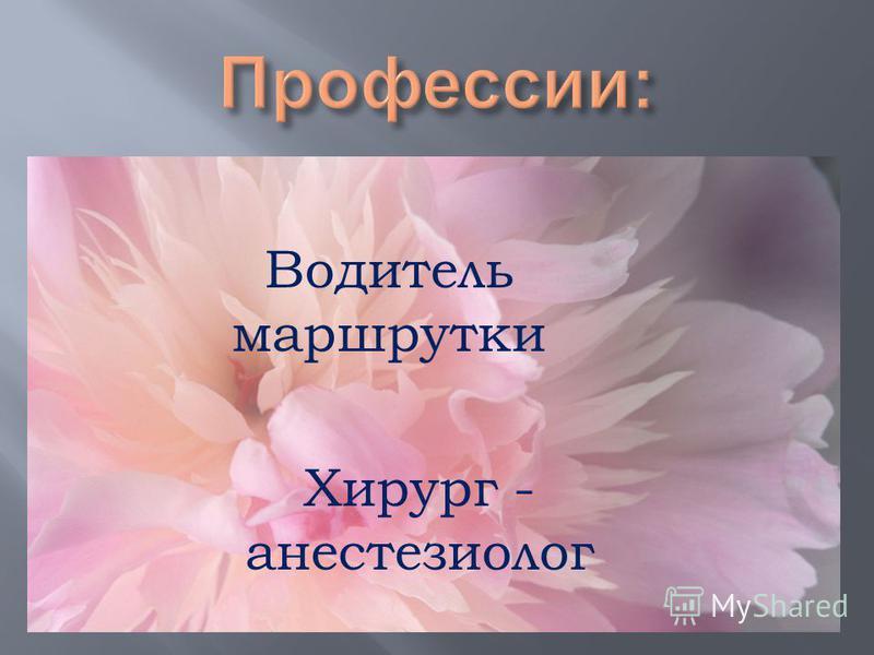 Водитель маршрутки Хирург - анестезиолог