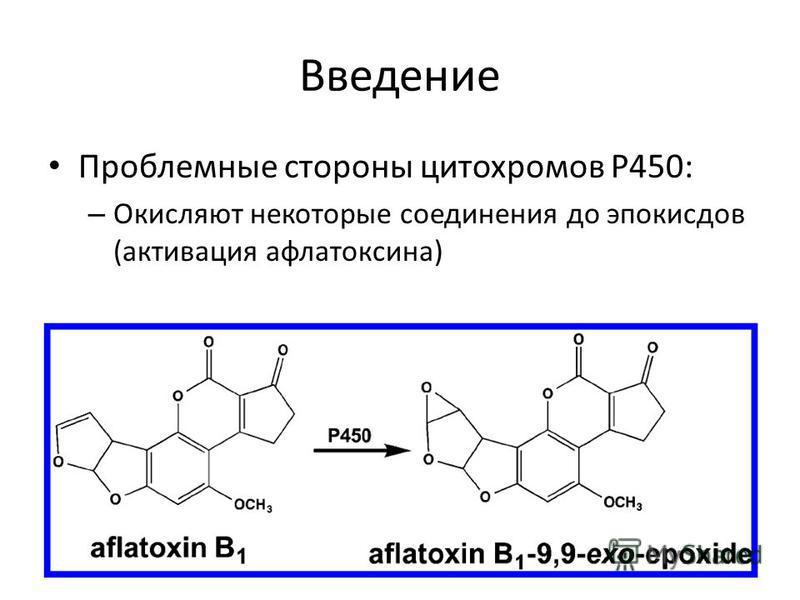 Введение Проблемные стороны цитохромов P450: – Окисляют некоторые соединения до эпоксидов (активация афлатоксина)