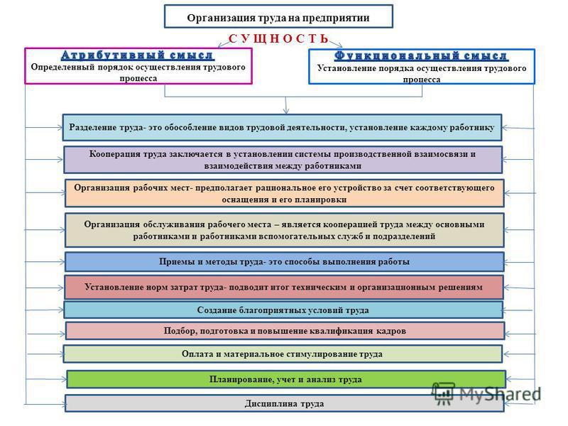 Организация труда на предприятии С У Щ Н О С Т Ь Разделение труда- это обособление видов трудовой деятельности, установление каждому работнику Кооперация труда заключается в установлении системы производственной взаимосвязи и взаимодействия между раб