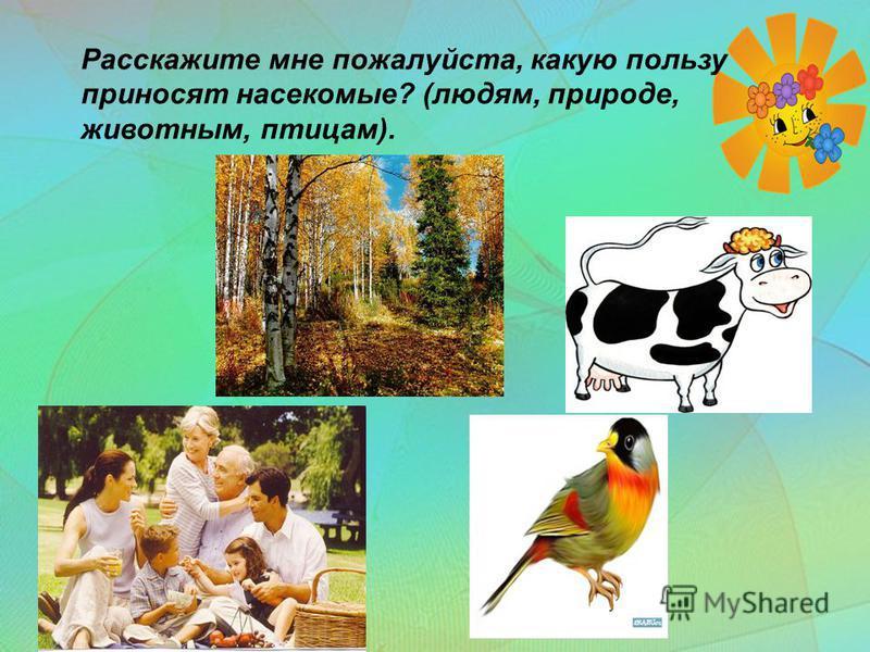 Расскажите мне пожалуйста, какую пользу приносят насекомые? (людям, природе, животным, птицам).