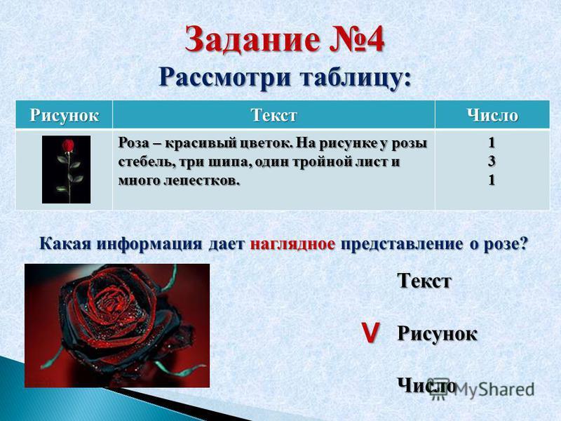 Задание 4 Рассмотри таблицу: Рисунок ТекстЧисло Роза – красивый цветок. На рисунке у розы стебель, три шипа, один тройной лист и много лепестков. 131 Какая информация дает наглядное представление о розе? Текст Рисунок Число V