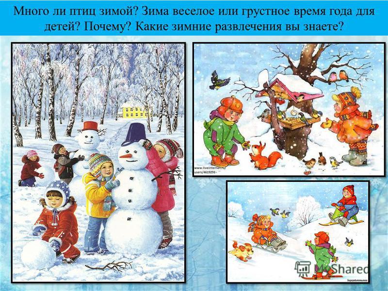 Много ли птиц зимой? Зима веселое или грустное время года для детей? Почему? Какие зимние развлечения вы знаете?