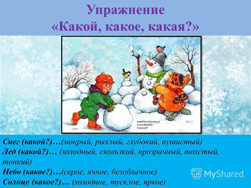 Упражнение «Какой, какое, какая?» Снег (какой?)…(мокрый, рыхлый, глубокий, пушистый) Лед (какой?)… (холодный, скользкий, прозрачный, толстый, тонкий) Небо (какое?)…(серое, ячное, безоблачное) Солнце (какое?)… (холодное, тусклое, яркое) Снежинки (каки