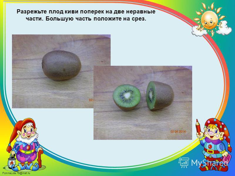 FokinaLida.75@mail.ru Разрежьте плод киви поперек на две неравные части. Большую часть положите на срез.
