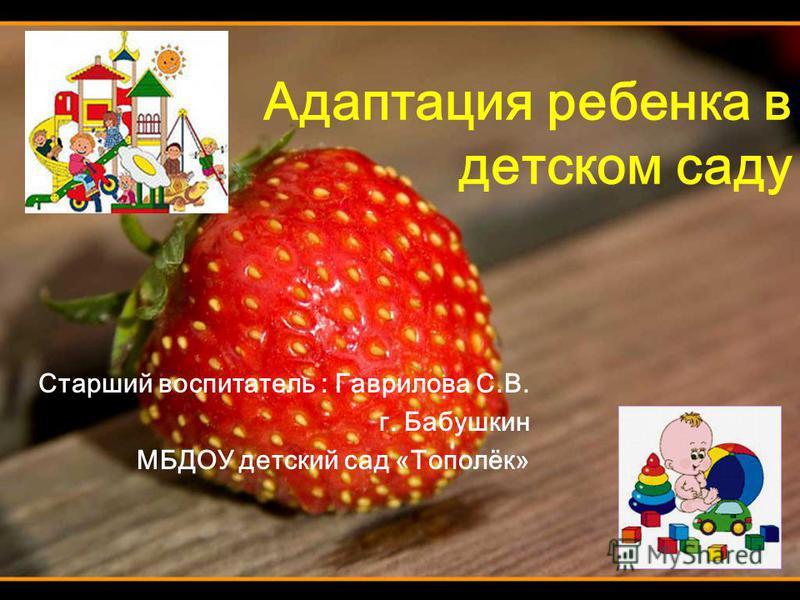 Адаптация ребенка в детском саду Старший воспитатель : Гаврилова С.В. г. Бабушкин МБДОУ детский сад «Тополёк»