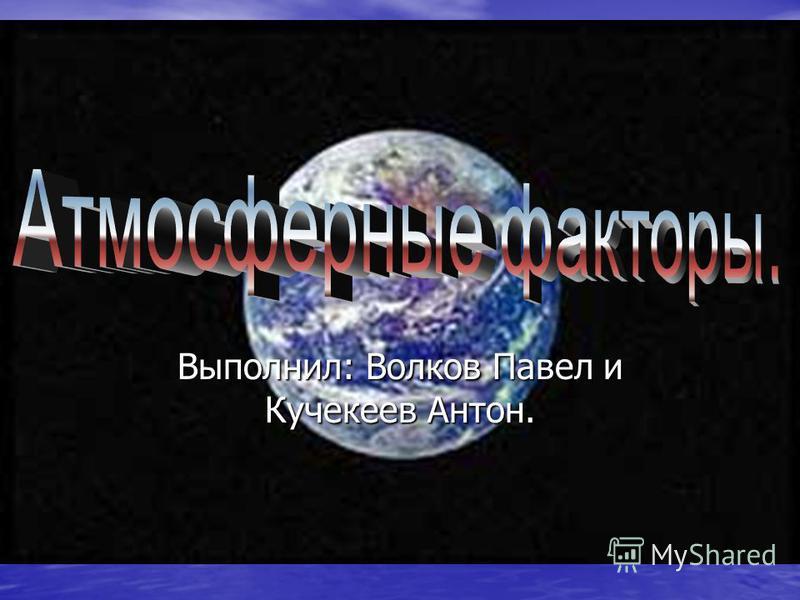 Выполнил: Волков Павел и Кучекеев Антон.