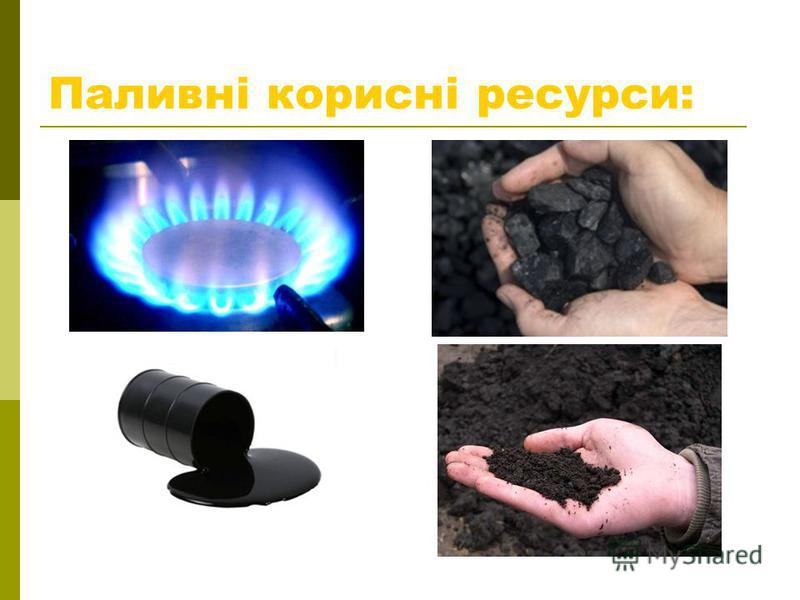 Паливні корисні ресурси: