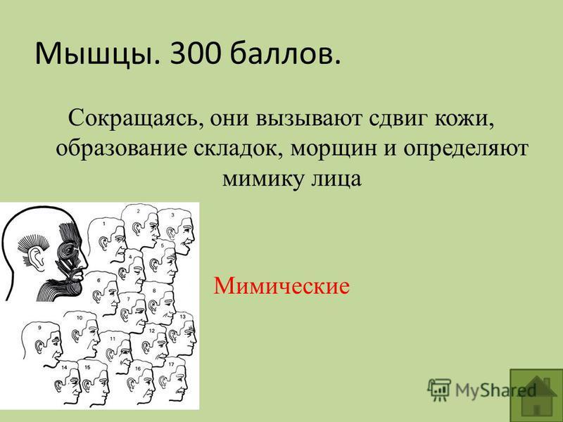 Сокращаясь, они вызывают сдвиг кожи, образование складок, морщин и определяют мимику лица Мимические Мышцы. 300 баллов.