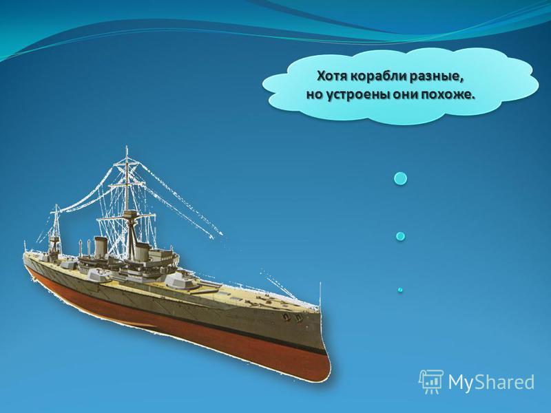 Хотя корабли разные, но устроены они похоже.