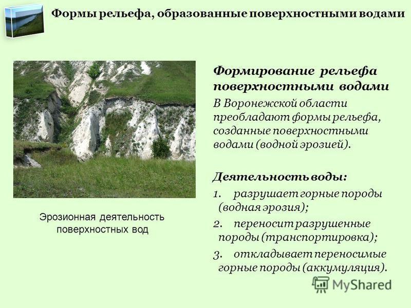 Формы рельефа, образованные поверхностными водами Формирование рельефа поверхностными водами В Воронежской области преобладают формы рельефа, созданные поверхностными водами (водной эрозией). Деятельность воды: 1. разрушает горные породы (водная эроз