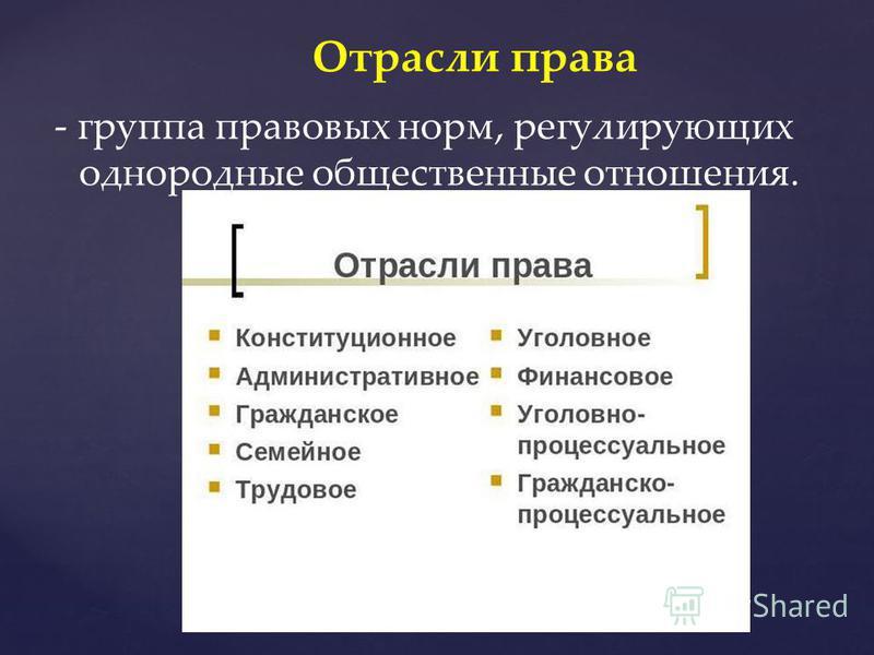 - группа правовых норм, регулирующих однородные общественные отношения. Отрасли права