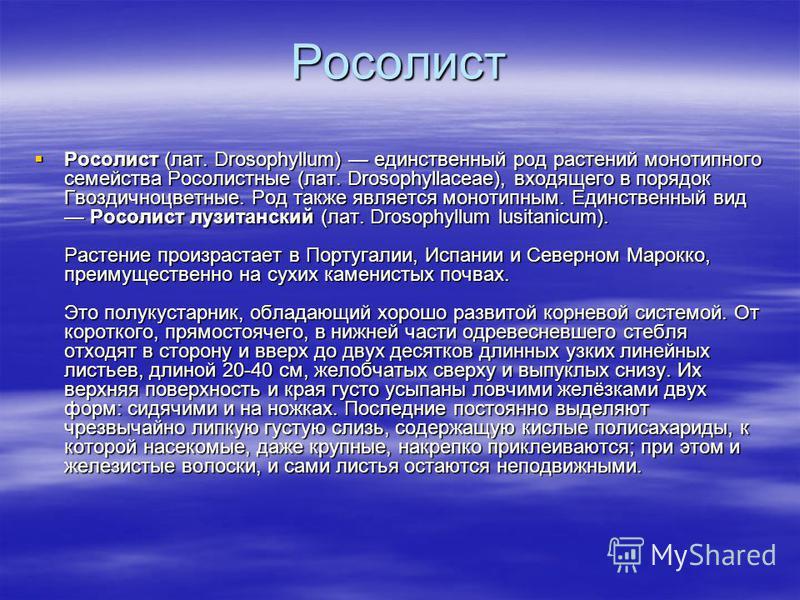 Росолист Росолист (лат. Drosophyllum) единственный род растений монотипного семейства Росолистные (лат. Drosophyllaceae), входящего в порядок Гвоздичноцветные. Род также является монотипным. Единственный вид Росолист лузитанский (лат. Drosophyllum lu