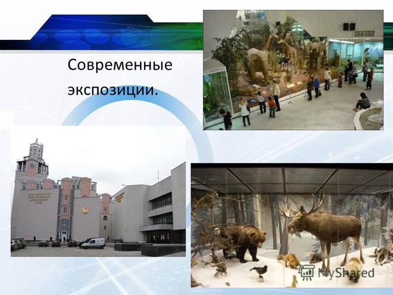 Современные экспозиции.