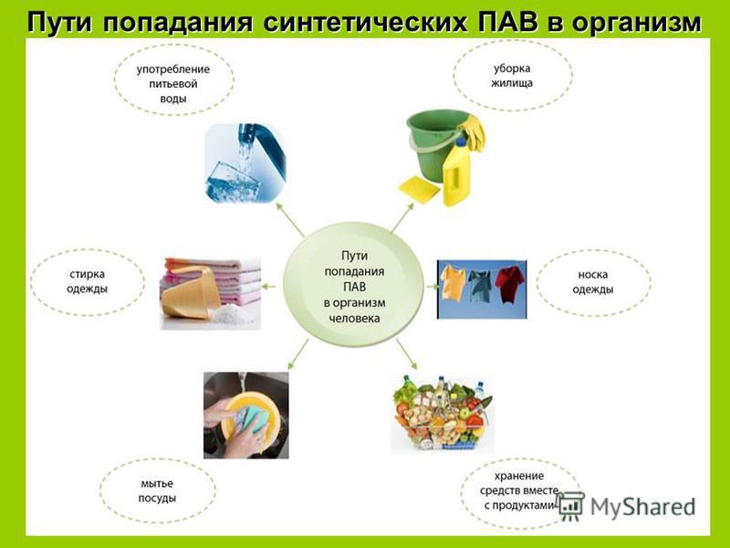 Пути попадания синтетических ПАВ в организм
