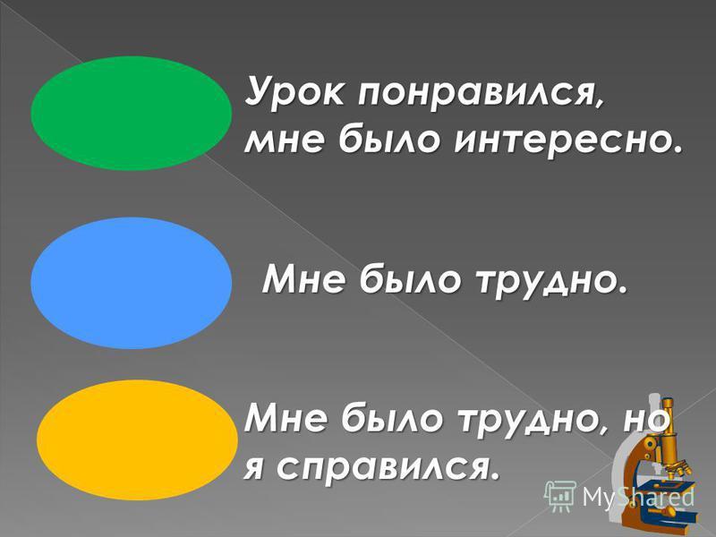 Урок понравился, мне было интересно. Мне было трудно. Мне было трудно, но я справился.