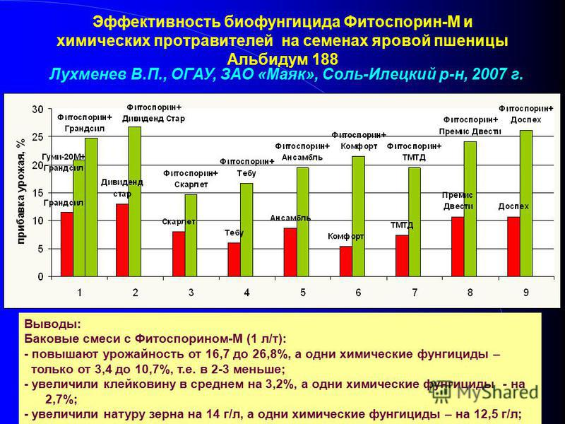 Эффективность биофунгицида Фитоспорин-М и химических протравителей на семенах яровой пшеницы Альбидум 188 Лухменев В.П., ОГАУ, ЗАО «Маяк», Соль-Илецкий р-н, 2007 г. Выводы: Баковые смеси с Фитоспорином-М (1 л/т): - повышают урожайность от 16,7 до 26,