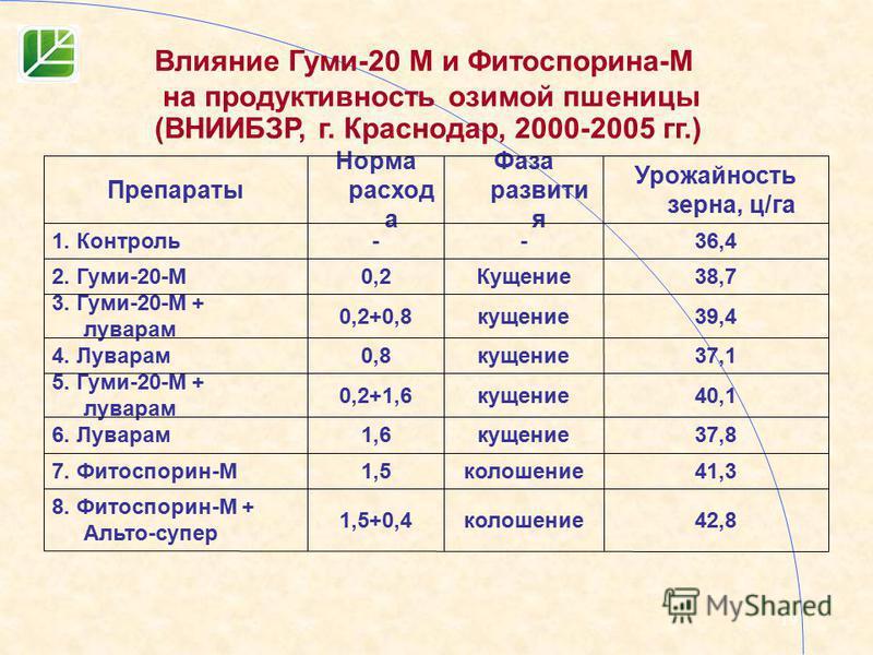 19 42,8 колошение 1,5+0,4 8. Фитоспорин-М + Альто-супер 41,3 колошение 1,57. Фитоспорин-М 37,8 кущение 1,66. Луварам 40,1 кущение 0,2+1,6 5. Гуми-20-М + луварам 37,1 кущение 0,84. Луварам 39,4 кущение 0,2+0,8 3. Гуми-20-М + луварам 38,7Кущение 0,22.