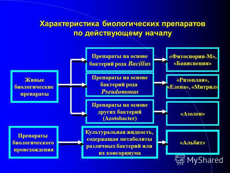 Препараты на основе бактерий рода Bacillus Препараты на основе бактерий рода Pseudomonas «Фитоспорин-М», «Бациспецин» «Ризоплан», «Елена», «Митрил» Препараты на основе других бактерий (Azotobacter) «Азолен» Живые биологические препараты Препараты био