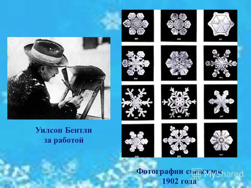 12 Фотографии снежинок 1902 года Уилсон Бентли за работой