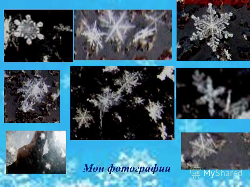 6 Мои фотографии