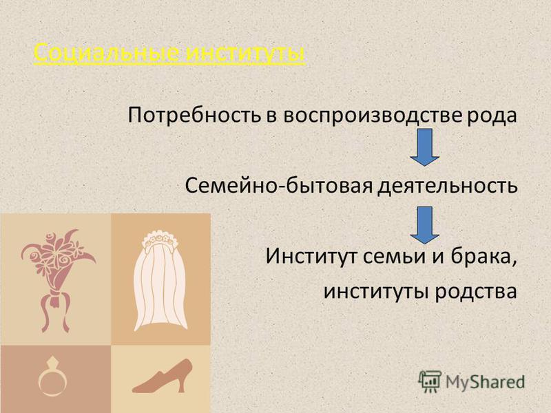 Социальные институты Потребность в воспроизводстве рода Семейно-бытовая деятельность Институт семьи и брака, институты родства