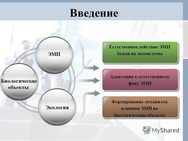 Введение ЭМП ЭМП Адаптация к естественному фону ЭМП Формирование механизма влияния ЭМП на биологические объекты Биологические объекты Биологические объекты Экология Экология Естественное действие ЭМП Земли на экосистемы