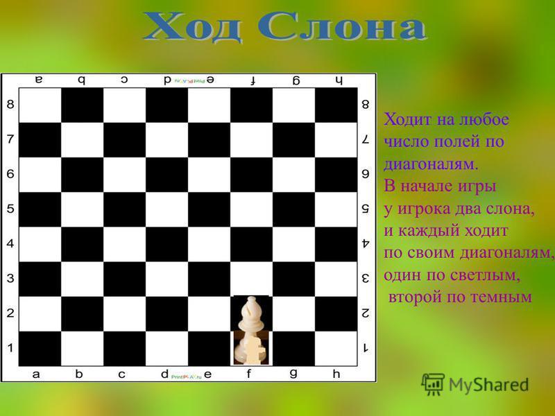 Ходит на любое число полей по диагоналям. В начале игры у игрока два слона, и каждый ходит по своим диагоналям, один по светлым, второй по темным