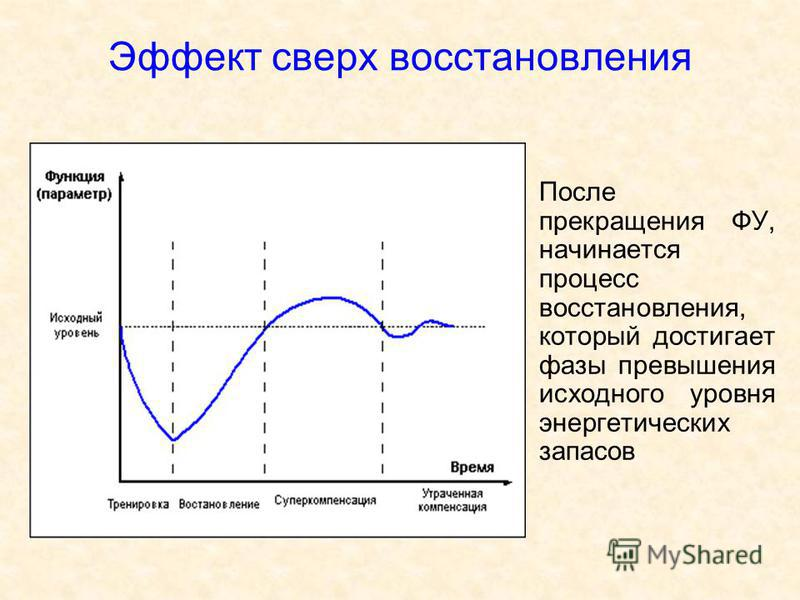 Эффект сверх восстановления После прекращения ФУ, начинается процесс восстановления, который достигает фазы превышения исходного уровня энергетических запасов