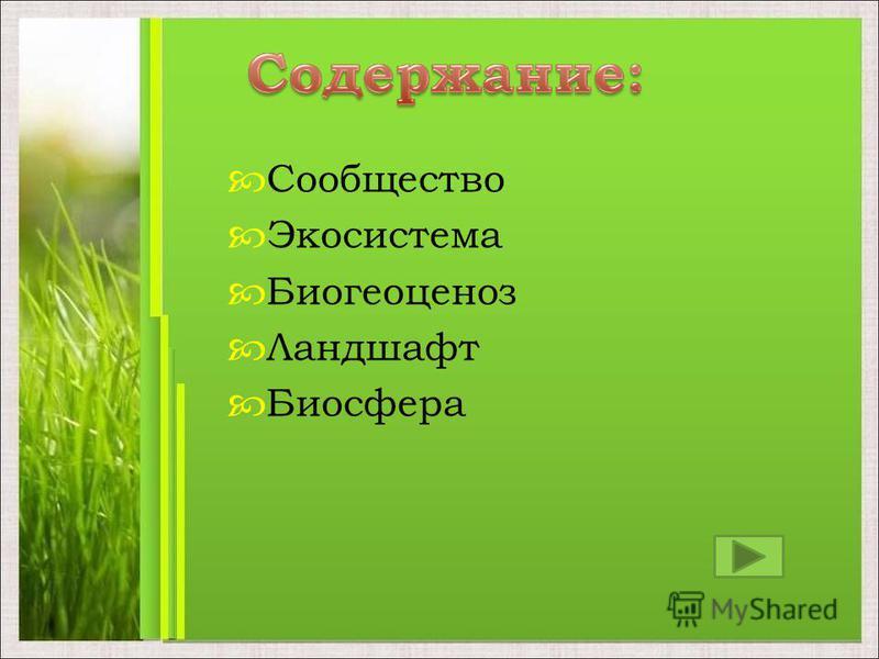 Сообщество Экосистема Биогеоценоз Ландшафт Биосфера